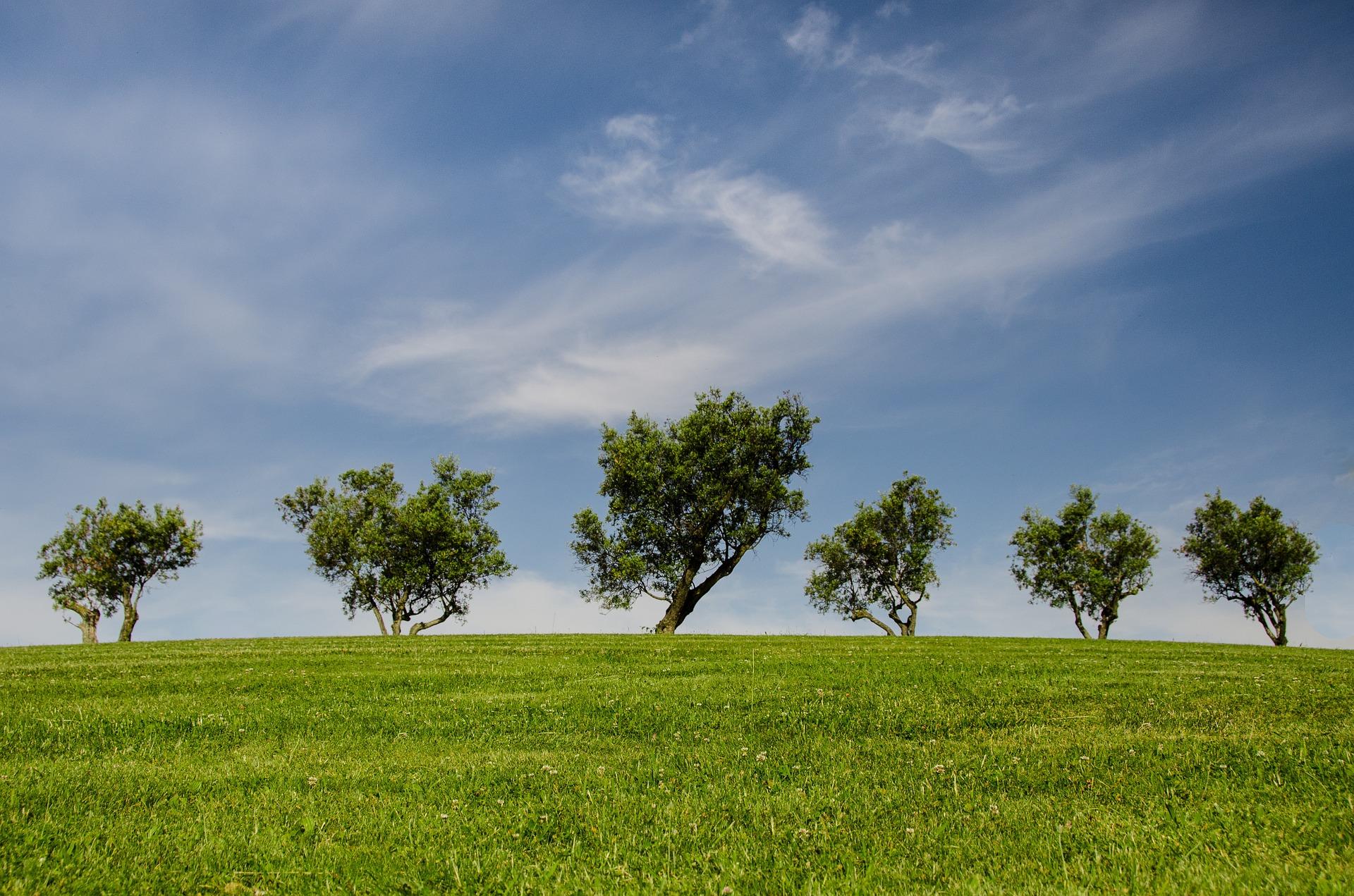 VAS, VIA e VIAS, valutazioni ambientali