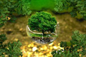 Definizione inquinamento ambientale