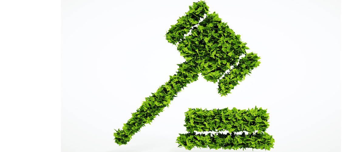 Consulenza Diritto Ambientale