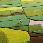 bonifica ambientale aree agricoli