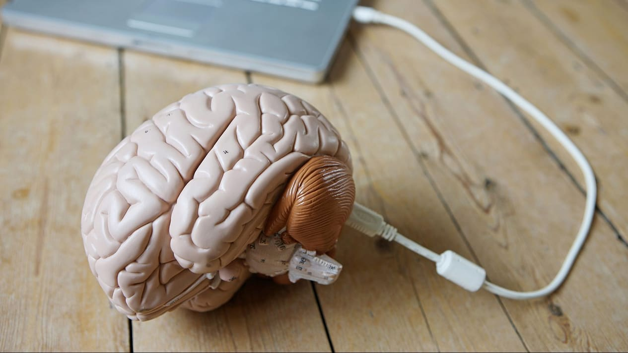 neuroscienze cognitive e applicazioni legali